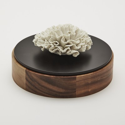 Chan XL| Black and brown wooden decorative box with a white ceramic flower