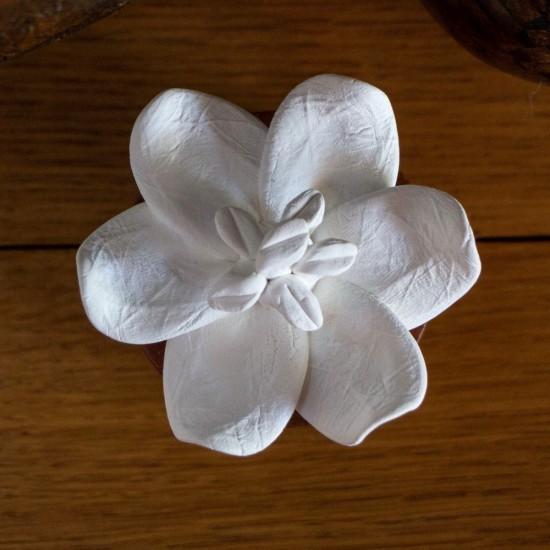 Jasmin d'Orient | Perfume diffuser wood and white ceramic