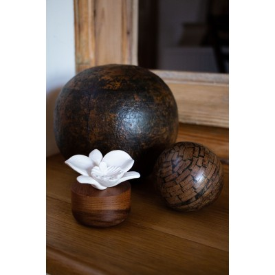 Room diffuser Orchidee du Nepal