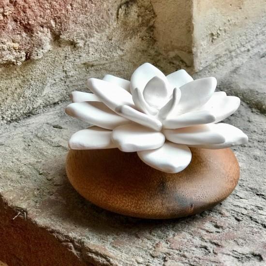 Star de Java | Perfume diffuser